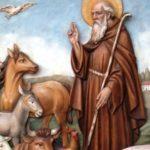Sant'Antonio Abate 1
