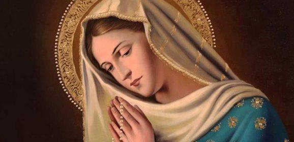 Devozione alla Beata Vergine Maria Immacolata: Supplica